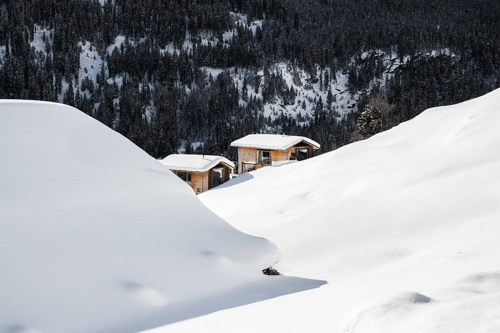 Zumthor Vacation Homes